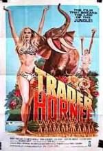 Trader Hornee (1970) afişi