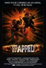 Trapped (ı)