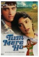 Tum Mere Ho (1990) afişi