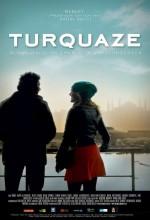 Turkuaz (2009) afişi