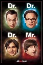 The Big Bang Theory Sezon 9 (2015) afişi