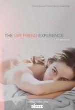 The Girlfriend Experience (2016) afişi
