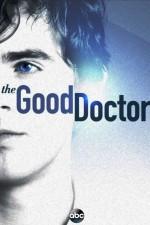 The Good Doctor (2017) afişi