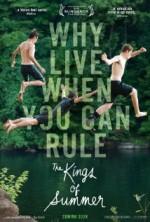 Yazın Kralları (2013) afişi