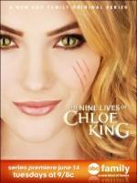 The Nine Lives Of Chloe King (2011) afişi