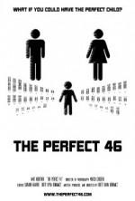 The Perfect 46 (2013) afişi