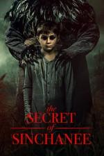 The Secret of Sinchanee (2021) afişi