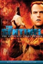 The Sentinel Sezon 1 (1996) afişi