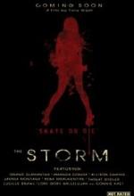 The Storm  afişi