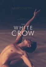 Beyaz Karga (2018) afişi