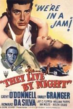 Gece Yaşarlar (1948) afişi