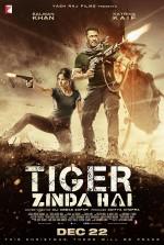 Tiger Zinda Hai (2017) afişi