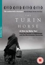 Torino Atı Afişi