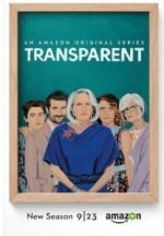 Transparent Sezon 3 (2016) afişi