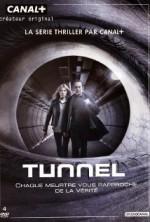 Tünel (2013) afişi