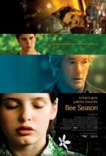 Umut Mevsimi (2005) afişi