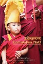Unmistaken Child (2008) afişi