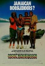 Üşütük Popolar (1993) afişi