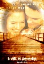 Uzaktakı Anılar (2002) afişi