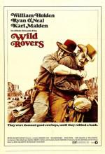 Vahşi Serüvenciler (1971) afişi