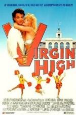 Virgin High (1991) afişi