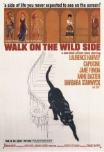 Walk On The Wild Side (1962) afişi
