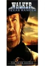 Walker, Texas Ranger 3: Deadly Reunion (1994) afişi