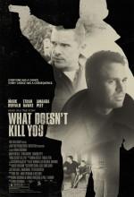 Suç Ağı (2008) afişi