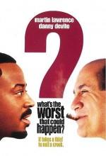 What's The Worst That Could Happen? (2001) afişi