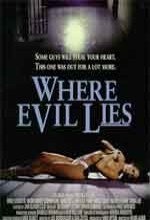 Where Evil Lies (1995) afişi