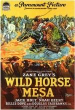 Wild Horse Mesa (1925) afişi