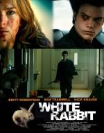 Beyaz Tavşan (2013) afişi