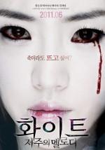 White: The Melody of the Curse (2011) afişi