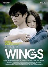 Wings (2012) afişi