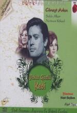 Yakut Gözlü Kedi (1966) afişi