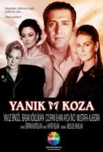 Yanık Koza (2005) afişi