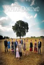 Yaprak Dökümü (2010) afişi