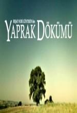 Yaprak Dökümü (2008) afişi