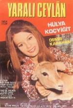 Yaralı Ceylan (1970) afişi