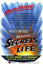 Yaşam Sırları (1956) afişi