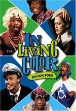 Yaşamın Renkleri (1993) afişi