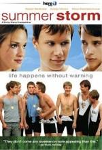 Yaz Fırtınası (2004) afişi