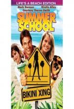 Yaz Okulu (1987) afişi
