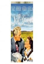 Yeşil Çayırlar (1947) afişi