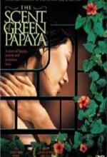 Yeşil Papaya'nın Kokusu Afişi