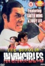 Yong Zheng Ming Zhang Shao Lin Men (1977) afişi