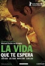 Your Next Life (2004) afişi