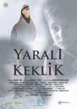 https://www.sinemalar.com/film/266326/yarali-keklik