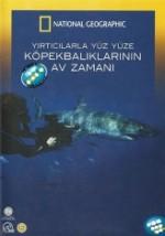Yırtıcılarla Yüz Yüze: Köpekbalıklarının Av Zamanı