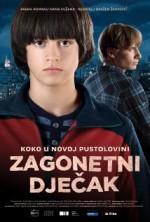 Mysterious Boy (2013) afişi